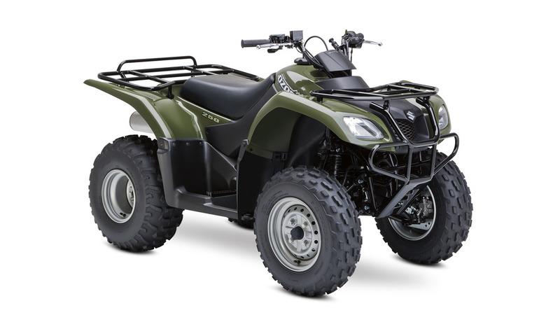 SuzukiOzark 250