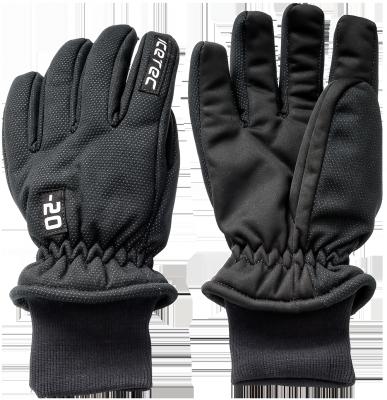 Thermo Handschoenen -20
