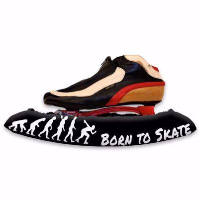 Born to Skate