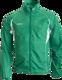 T&F Wind Jacket Men Groen