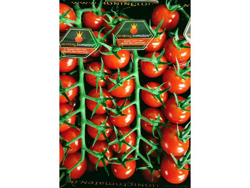 Honing tomaatjes (per trosje ± 150 gram)
