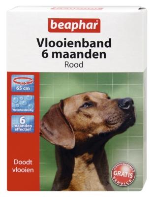 Vlooienband hond rood