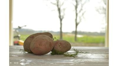 Bio aardappels Sarpomira (kg)