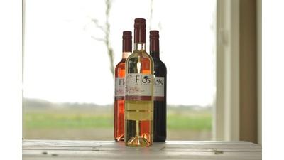 Bio witte wijn Flos de Pinosa (750 ml)