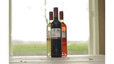 Bio rode wijn Flos de Pinosa (750 ml)