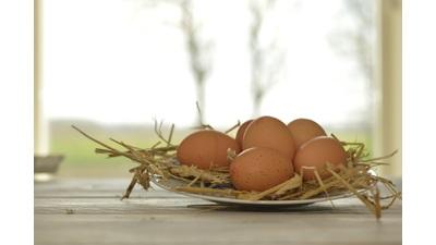 Bio scharrel eieren (6 stuks)