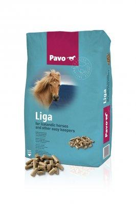 Pavo Liga (20 kg)