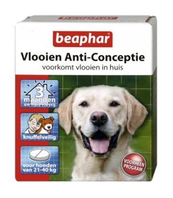 Vlooien Anti-conceptie honden (21-40kg)