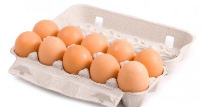 Scharrel eieren (Sturm, 10 stuks)