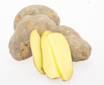 Aardappel voor FRIETJES