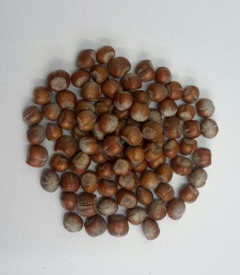 Hazelnoot In Dop (prijs per 200 gram)