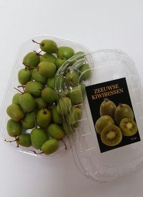 Kiwibes (125 gram)