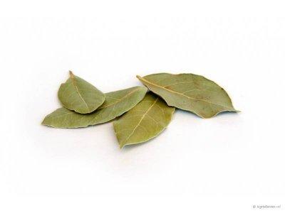 Verse laurier  (20 gram)