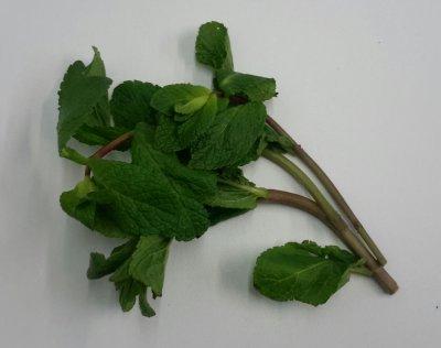 Munt (20 gram)