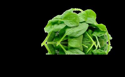 Spinazie gewassen (500gr)